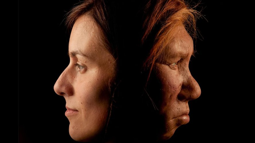 Our Neanderthal Ancestry