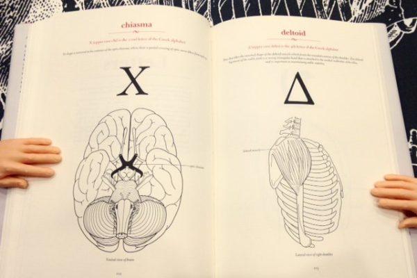 Review: The Secret Language of Anatomy
