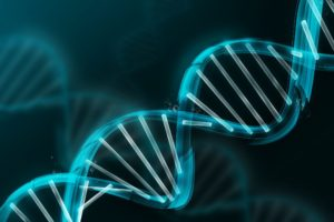 Age Changes in Epigenetic Methylation Correlate with Age