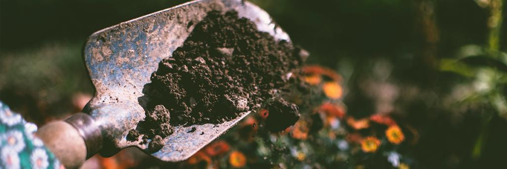 Let's Talk About Soil